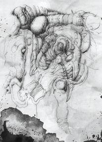 Kopf, Tuschezeichnung, Zeichnungen