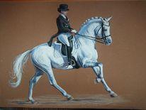 Dressur, Pferdesport, Weiß, Dressurpferd