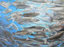 Schwarm, Fisch, Unterwasser, Wolfsbarsch