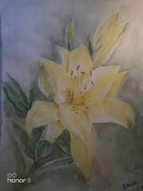 Blumen, Lilie, Aquarellmalerei, Aquarell