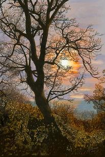 Panoramabaum, Meer, Digitale malerei, Sunsettree