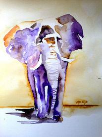 Aquarellmalerei, Tiere, Elefant, Dickhäuter
