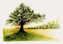 Natur, Gegenlicht, Tuschmalerei, Baum