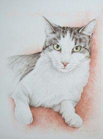 Katze, Tuschmalerei, Auftragszeichnung, Tierportrait