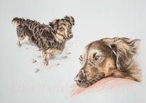 Tiere, Tuschmalerei, Tierportrait, Hund