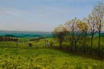 Gras, Hügellandschaft, Blattwerk, Baum