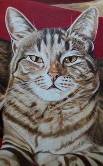 Tiere, Katze, Ölmalerei, Stufe