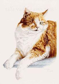 Tierportrait, Auftragsarbeit, Katze, Tuschezeichnung