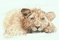 Müde, Tuschmalerei, Wildtier, Tierwelt