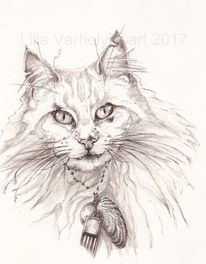 Illustration, Katze, Figurativ, Tusche