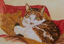Federzeichnung, Muster, Tierportrait, Katze