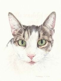 Tuschmalerei, Tuschezeichnung, Auftragsarbeit, Tierportrait