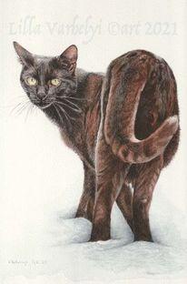 Katze, Tuschmalerei, Schwarze katze, Tuschezeichnung