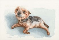 Tuschmalerei, Tierportrait, Hund, Tierzeichnung