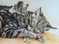 Katzenportrait, Grau, Realistischte malerei, Schlaf