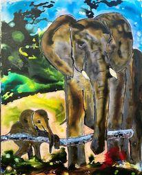 Elefant, Urwald, Blut, Bedrohte tiere