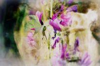 Fotografie, Violett, Lila, Verfremden