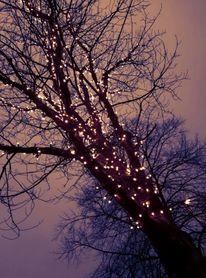 Beleuchtung, Weihnachtslichter, Stadt, Licht