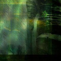 Stimmung, Natur, Baum, Digitale kunst