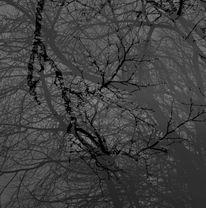 Tag, Doppelbelichtung, Fotografie,