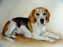 Tierportrait, Hundeportrait, Malerei, Beagle