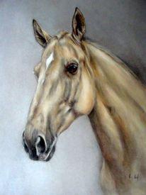 Pferdeportrait, Pferdezeichnung, Malerei