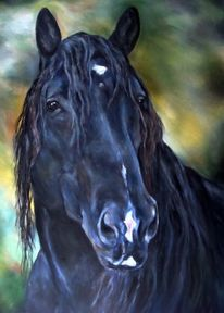 Percheron, Pferdeportrait, Malerei,