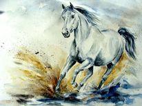 Pferde, Pferdeaquarell, Aquarell, Bewegung