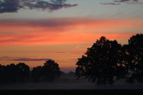 Natur, Nebel, Landschaft, Sonnenuntergang
