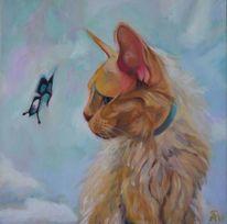 Katze, Schmetterling, Tiere, Haustier