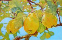 Früchte, Baum, Quitten, Malerei