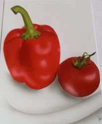 Illustrationen, Stillleben, Paprika, Tomate