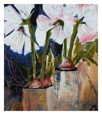 Blumen, Weiß, Malerei, Amaryllis