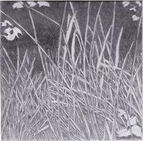 Zeichnung, Bleistiftzeichnung, Natur, Pflanzen