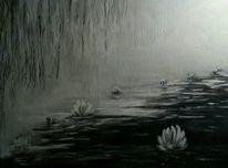 Teich, Seerosen, Ayrcl, Schwarz weiß