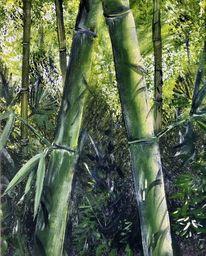 Cevennen, Bambus, Hain, Malerei