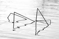 Binsen, See, Wasser, Fotografie