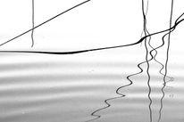 Zen, Wasser, Binsen, Welle