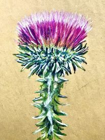 Stachel, Blüte, Distel, Malerei