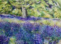 Landschaft, Provence, Lavendel, Malerei