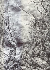 Dunkel, Baum, Mystik, Wald
