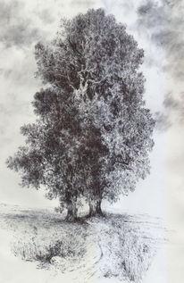Baum, Landschaft, Acker, Threes