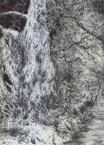 Baum, Natur, Stillleben, Holz