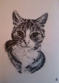 Tiger, Mietze, Katze, Malerei