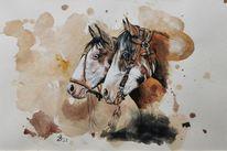 Criollo, Pferde, Argentinien, Aquarell