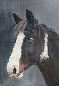 Pferde, Pferdekopf, Portrait, Malerei
