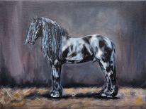 Friese, Pferde, Hengst, Malerei