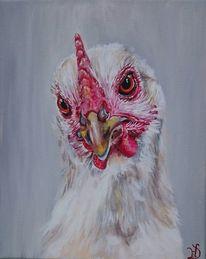 Augen, Huhn, Henne, Geflügel