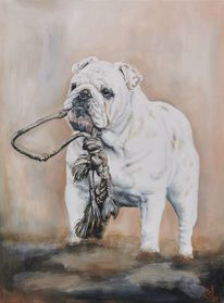 Hund, Bulldogge, Maya, Malerei