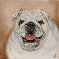 Bulldogge, Portrait, Hund, Malerei
